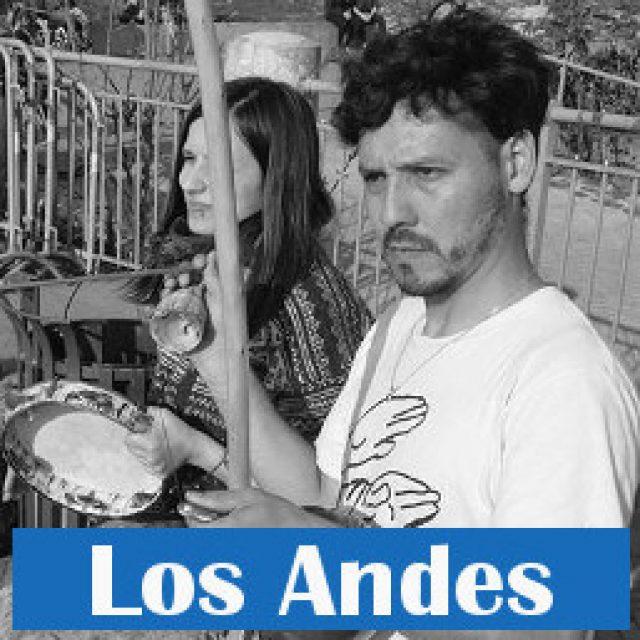 Professor Los Andes