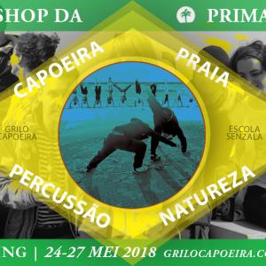 Primavera workshop Terschelling 2018 – Grilo Capoeira