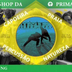 Primavera workshop Terschelling 2019 – Grilo Capoeira